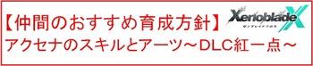 41 アクセナ育成方針.jpg